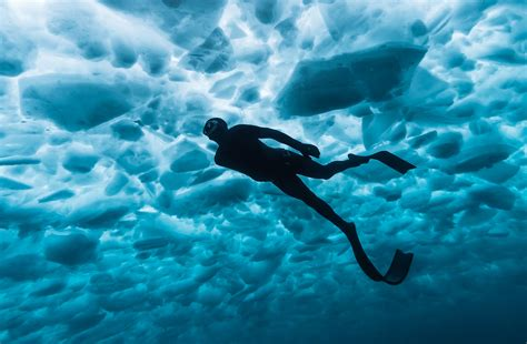 freediving under the ice of georgian bay canadian geographic