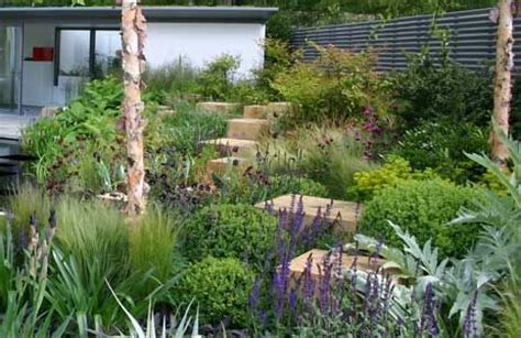 dan pearson garden designs at the rhs chelsea flower show