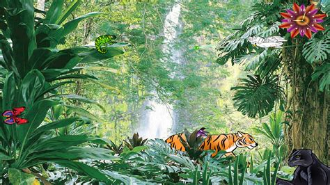 windows  jungle screensaver jungle falls screensaver
