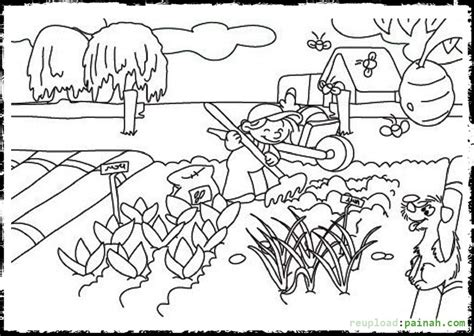 coloring pages of garden vegetables vegetable garden coloring pages printable coloring pages