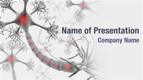 free brain powerpoint templates neuroscience powerpoint templates neuroscience