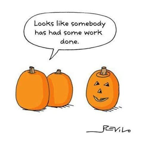 pumpkin jokes 19 best images about pumpkin eater all things