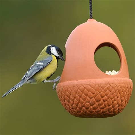 terracotta acorn bird feeder rspb bird feeding rspb shop