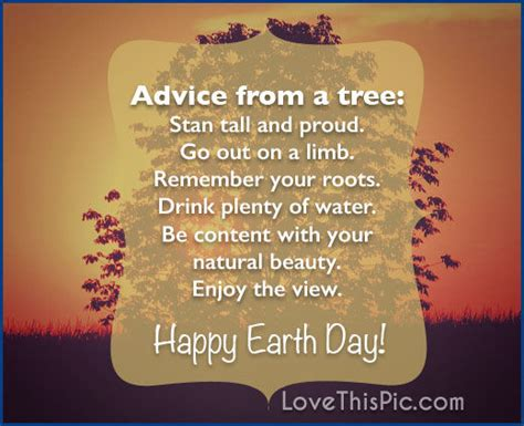 advice   tree happy earth day pictures   images  facebook tumblr pinterest