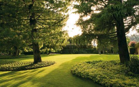 giardini verdi realizzazione giardini e spazi verdi privati e pubblici