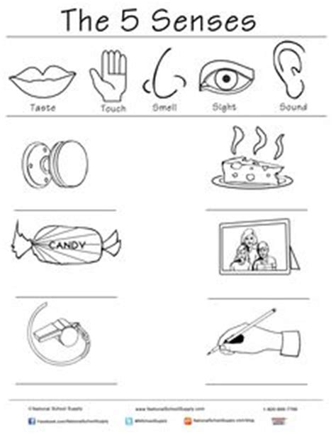 free coloring pages of five senses worksheet 1000 images about five senses on pinterest five senses