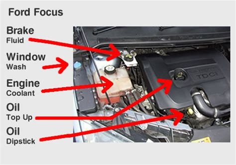 ford focus car diagram driverlayer search engine