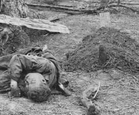 American civil war dead bodies