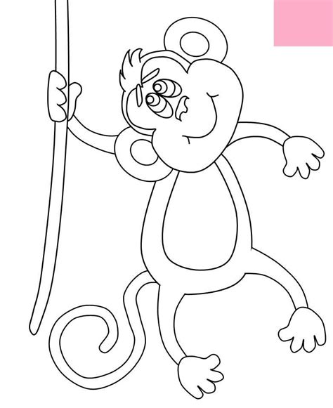 monkey coloring pages for preschool monkey pictures for kids coloring home