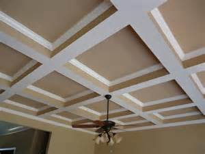 Custom Home Interiors Charlotte Mi by C Offered Ceiling Design For Homes Trend Home Design And