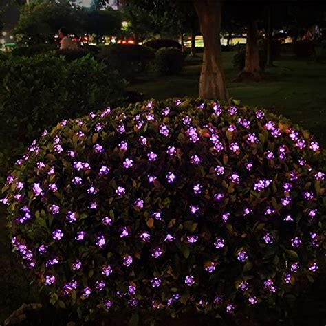 solar flower lights innoo tech solar flower string lights outdoor 50 led