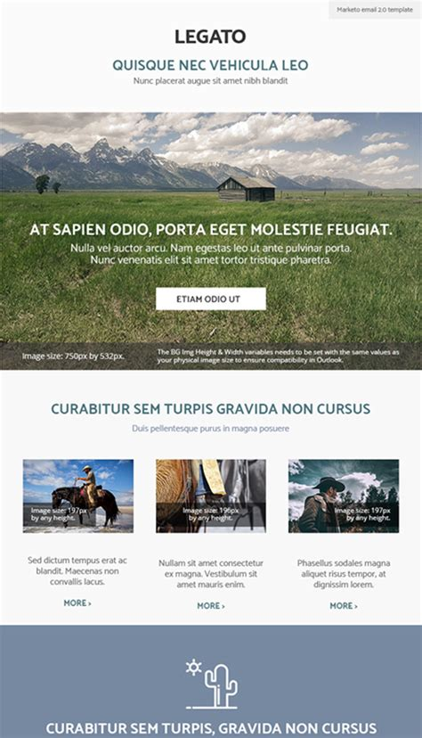 Responsive Marketo Email And Landing Page Templates Perkuto Marketo Responsive Email Templates