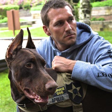 brandon mcmillan lucky 1000 images about brandon mcmillan on rescue