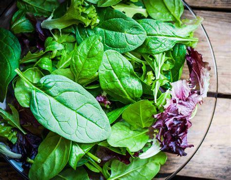 alimentazione kousmine metodo kousmine istruzioni per l uso cucina naturale