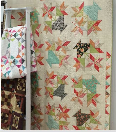 Fig Tree Quilts by 17 Best Images About Fig Tree Quilts On Quilt