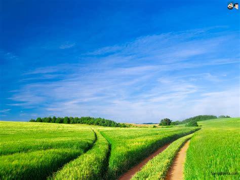 landscaping pics landscapes wallpaper 247
