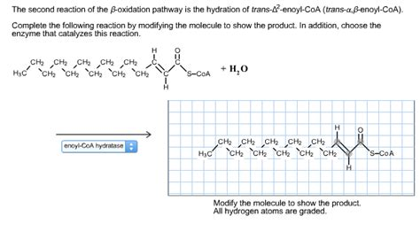 hydration questions and answers solved the second reaction of the oxidation pathway is