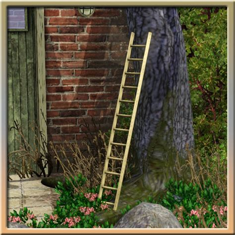 Decorative Wall Ladder by Cyclonesue S Decorative Wall Ladder Small