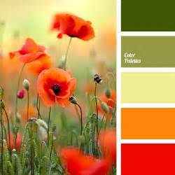 poppy color and olive green color palette ideas