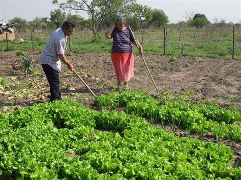 imagenes satelitales para agricultura qu 233 hay tras la nueva ley de agricultura familiar