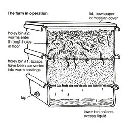 Organic Kids Bedding Worm Farming A Guide On How To Set Up A Worm Farm