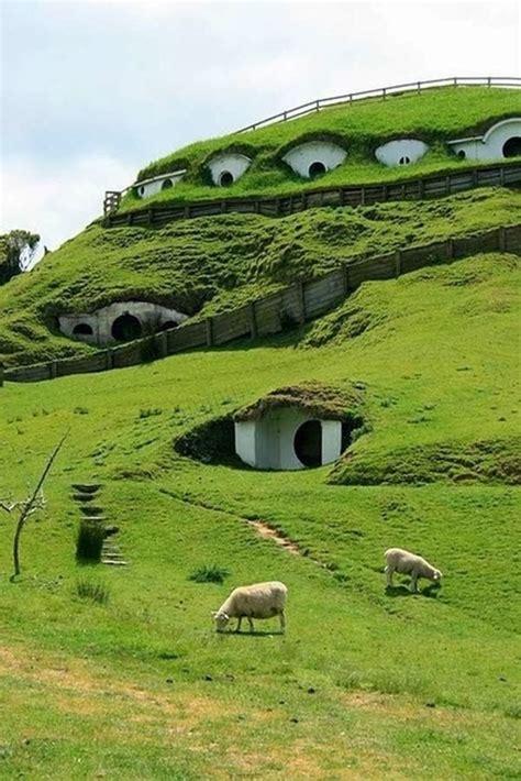 les maisons hobbit en nouvelle zelande construire tendance