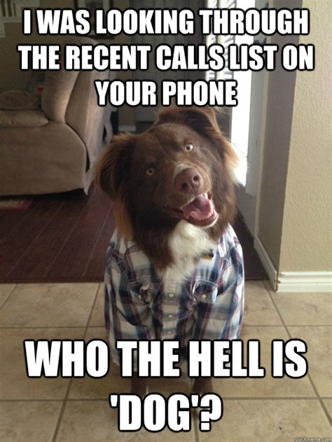 Dog Phone Meme - i was looking through the recent calls list on your phone