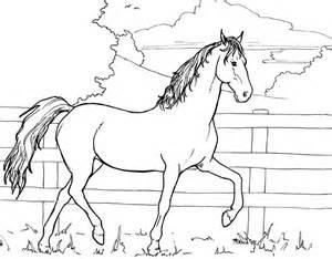 ausmalbilder pferde beste ausmalbilder