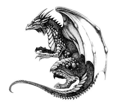 black white graphic color dragon tattoos part 4 3d