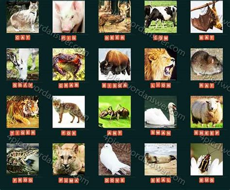 guess animal  answers  pics  word game answers