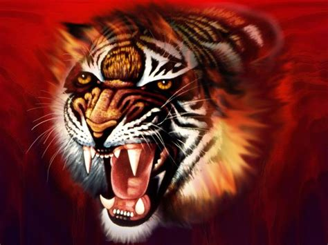 hd wallpaper for android tiger tiger 3d wallpaper