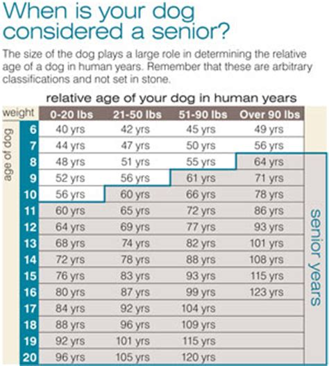 when is a considered a senior senior care geriatric exams