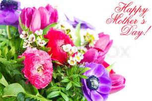 Flowers For Mother S Day by Flowers For Flower Lovers Happy Mother S Day Flowers Cards