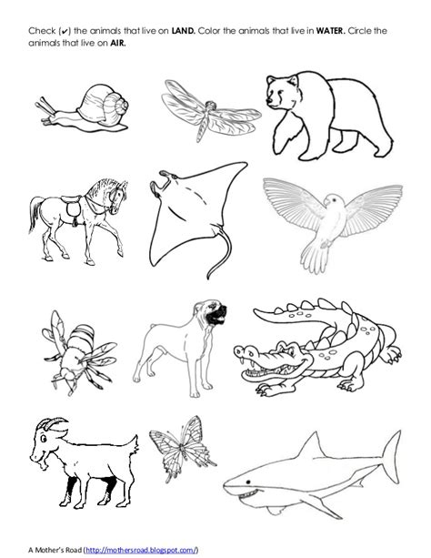 coloring pages of land animals land and water animals drawing www pixshark com images