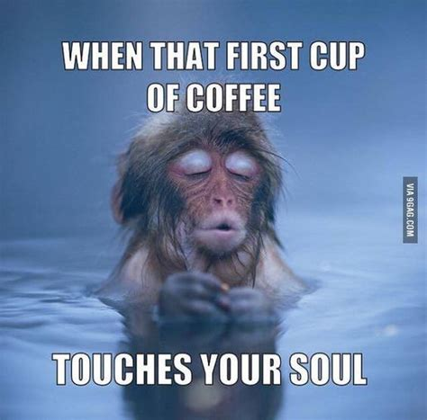 Coffee Meme Images - 45 funny coffee memes that will have you laughing home