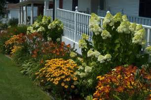 bushes for landscaping front yard landscaping plants several great trees ideas