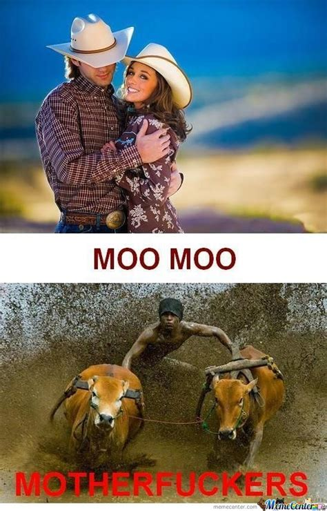 Moo Meme - moo meme 28 images 35 most funny cow meme pictures and