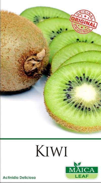 Benih Buah Kiwi benih kiwi maica leaf 1 jualbenihmurah