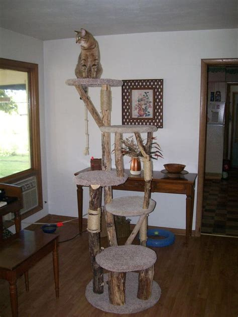 Handmade Cat Tree - 17 best images about cat trees on