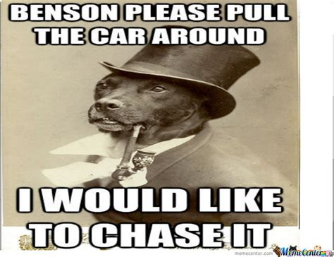 Benson Meme - benson dog meme dog best of the funny meme
