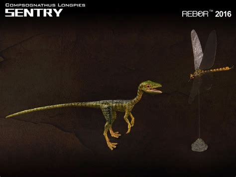 Rebor Compsognathus Bad Company 190 best images about rebor prehistoric animals on