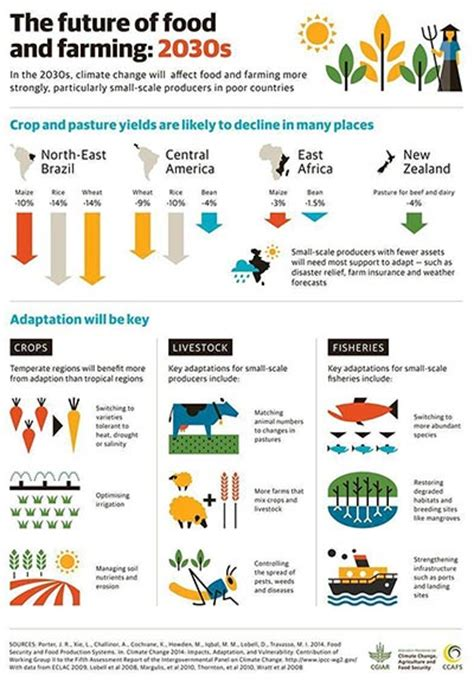 agriculture climate change and food security in the 21st century our daily bread books how will climate change affect food security