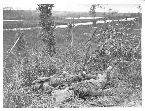 Vcd Original Casualties Of War identification of battle casualties world
