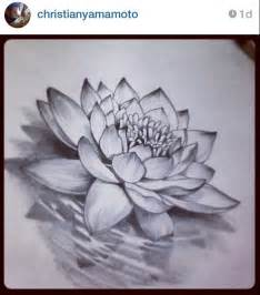 Realistic Lotus Flower 25 Best Ideas About Lotus Drawing On Lotus