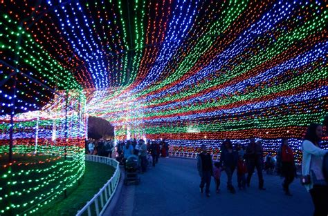 walk through christmas lights walk through a christmas lights maze holiday first date