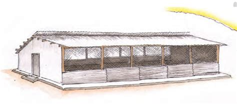 Chicken House Design And Construction In Kenya Beat The Competition Through Efficient Poultry Farming