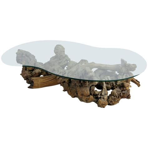 Large Root Burl Driftwood Coffee Table With Free Form Driftwood Glass Coffee Table