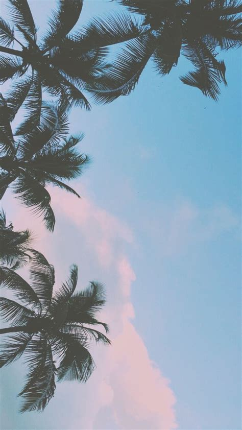 wallpaper for iphone on tumblr best 25 iphone 5s wallpaper tumblr ideas on pinterest