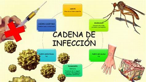 fiebre amarilla en el peru 2016 una epidemia de fiebre amarilla controlada para la que no