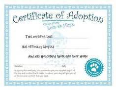 1000 images about teddy adoption on pinterest